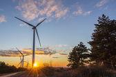 Wind Turbines at Sunrise 3 — Stock Photo