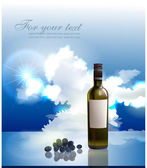 Fantastic bottle of wine illustration — Stockvector