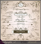 Calligraphic design elements part of collection — Stockvector