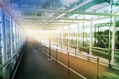 Glass tunnel, LONDON, UK - MARCH 23, 2014: Stansted airport details of contemporary airport interior — Stock Photo