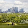 LONDON, UK - June 17, 2014: Canary wharf business and banking aria view from the hill — Stock Photo #49900553