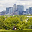 LONDON, UK - June 17, 2014: Canary wharf business and banking aria view from the hill — Stock Photo #49900563
