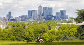 LONDON, UK - June 17, 2014: Canary wharf business and banking aria view from the hill — Stockfoto