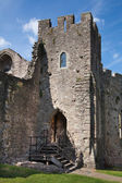 CHEPSTOW CASTLE, WALES, UK - 26 JULY 2014: Chepstow castel ruins, Foundation, 1067-1188. Situated on bank of the River Wye — Stock fotografie