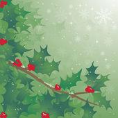 Holly Tree — Stock Vector