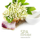Spa still life over white — Stock Photo