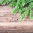 Fir tree branch on wood background — Stock Photo