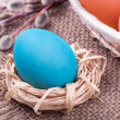 Easter egg in small nest with Easter basket and willow  — Foto Stock