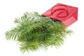 Fir-tree twigs in red paper-bag isolated on white background — Stock Photo