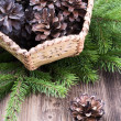 Basket with pine cones on wooden background — Stock fotografie