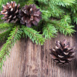 Fir tree twigs with three cones on  wood background — Zdjęcie stockowe