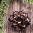 Stock Photo: Fir tree branch with a cone on wooden table