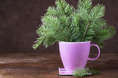 Fir-tree twigs in a mug on old wooden table — Stock Photo