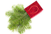 Fir-tree twigs in red paper-bag isolated on white — Stock Photo