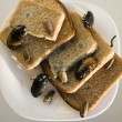 图库照片: Bread on dish infested with roaches and mold