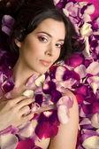 Beautiful young woman In rose's petals — Stok fotoğraf