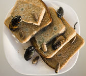 Bread on dish infested with roaches and mold — Stockfoto