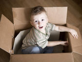 Portrait of cute little boy in carton box — Stock Photo
