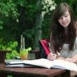 Stock Video: Student doing homework in the park