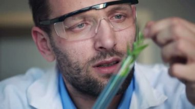 Biochemist looking at plant — Stock Video
