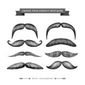 Mustache hand drawn collection — Stock Vector