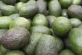 Set of avocados — Stock Photo