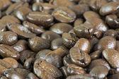 Macro of Coffee Beans II — Stock Photo