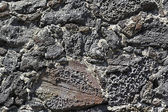 Rock Wall Texture — Stock Photo