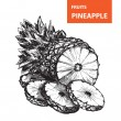 Pineapple — Stockvector #37799419