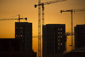 Cranes at sunset. Industrial construction cranes and building silhouettes over sun at sunrise. — Stock Photo
