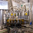 Olive oil factory, Olive Production — ストック写真 #37666905