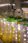 Olive oil factory, Olive Production — Stock Photo