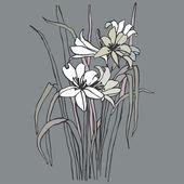 Obraz kytice z lilií — Stock vektor
