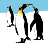 Three penguins — Stock Vector