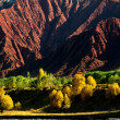 Red mountain with golden and green trees in meadow — Stock Photo