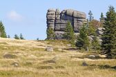 Group of rocks in Karkonosze — Стоковое фото