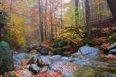 Waterfall Podgornej in the Giant Mountains, Poland — Stock Photo