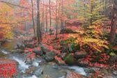 Vattenfall podgornej i giant mountains, polen — Stockfoto