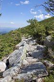Mountain trail in Karkonosze — Stock Photo