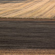 Plowed soil — Stock Photo #37760003