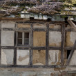 Stock Photo: Ruined timbered house