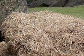 Haystack — Foto de Stock