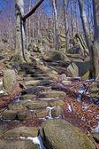 Kamienne schody do zamku chojnik, Karkonoszy, Polska — Zdjęcie stockowe