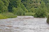 überschwemmung fluss — Stockfoto