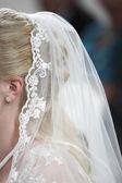 Hochzeitsschleier — Stockfoto