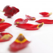 Stock Photo: Tulips red leaves