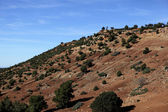 Landscape in Morocco — Stock Photo
