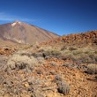 Stock Photo: Teide, Tenerife, Canary Islands, Spain.