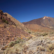 View of volcano Mount Teide, in Teide National Park — Stock Photo #40821117