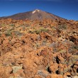 Stock Photo: Mount Teide, Tenerife.